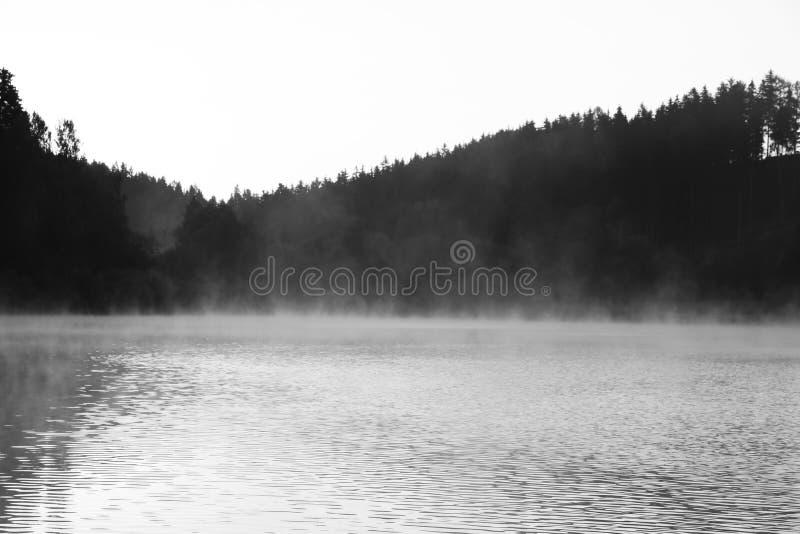 Nevelig meer met grijs bos royalty-vrije stock fotografie