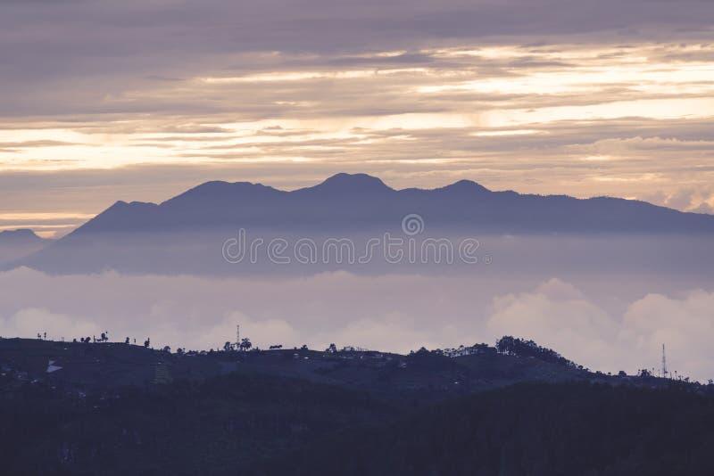 Nevelige berg in schemertijd in Bandung-stad stock foto's