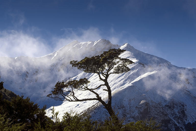 Nevelige bergpiek, het Nationale park van Fiordland stock foto's