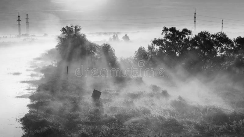Nevelige Dawn stock foto