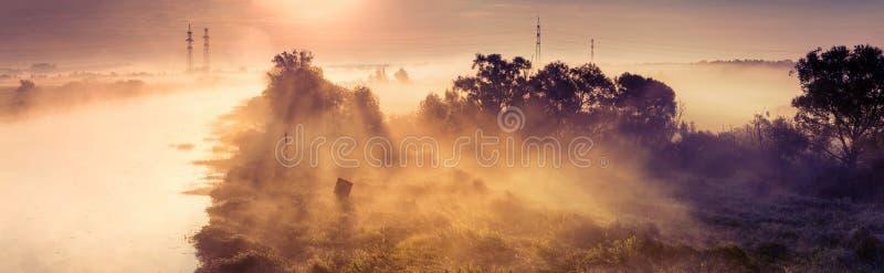 Nevelige Dawn stock foto's
