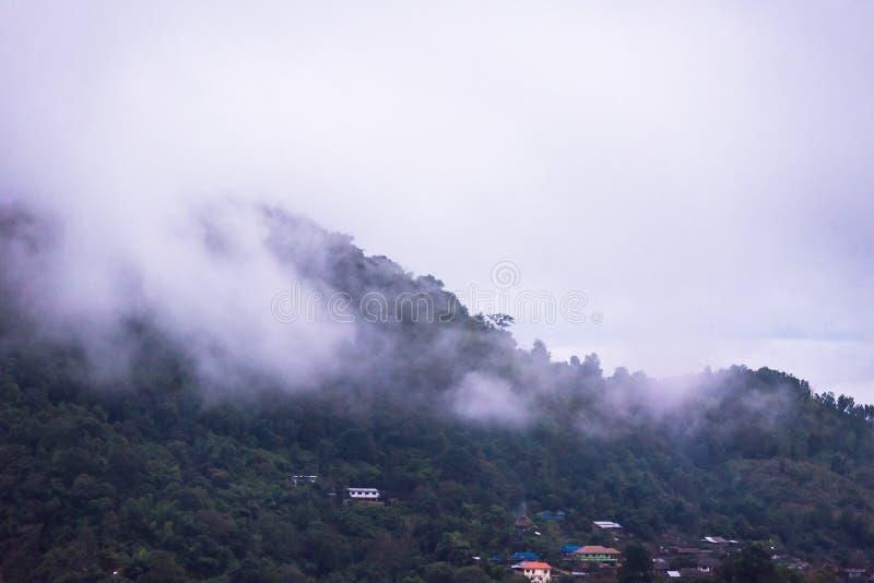 Nevelige ochtend mistige ochtend van het hoogland thailand royalty-vrije stock afbeelding