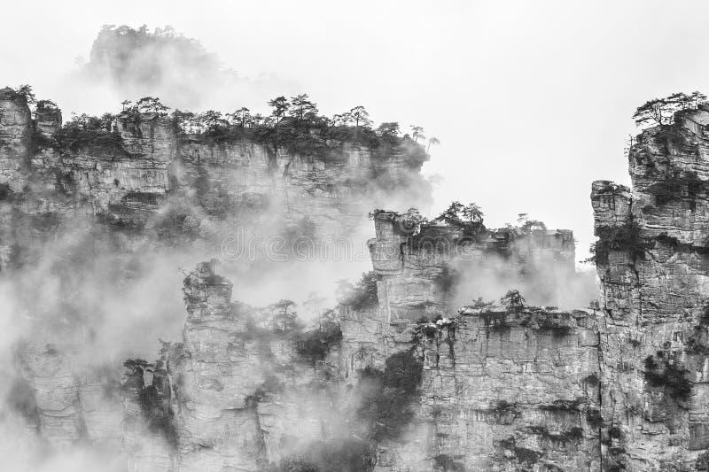 Nevelige steile bergpieken - het nationale park van Zhangjiajie stock afbeeldingen