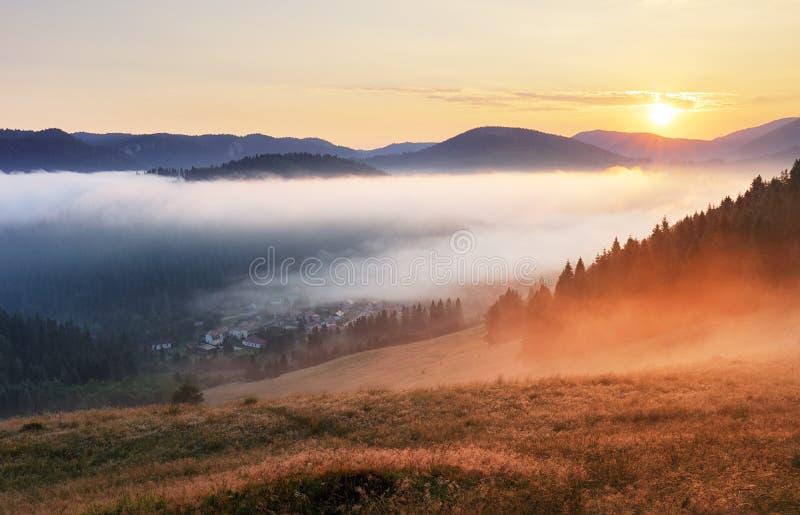 Nevelige zonsopgang met zon en bos, Mlynky, Slowakije stock afbeelding
