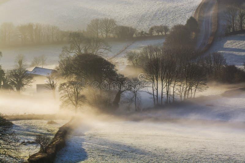 Nevelige zonsopgang over de Devonshire-gebieden met bomen voor ogen, Brentor, Devon, het UK royalty-vrije stock foto