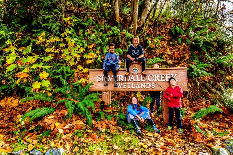 Neven die op het teken bij de ingang aan Silverdale-Kreekmoerasland, een zoetwatermoeras en een Moeras dichtbij Opdracht zitten,  royalty-vrije stock fotografie