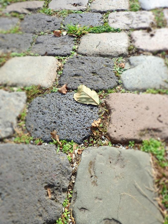 A never ending road. Pavement with natural stones. All kinds of grey. The stones might be roman pavement reused. Nature is already taking over again. Small moss stock photography