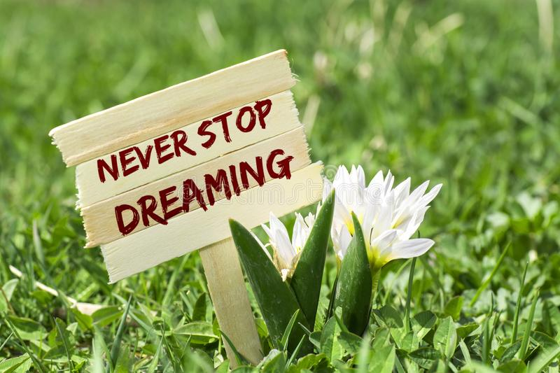 Never stop dreaming. On wooden sign in garden with white spring flower royalty free stock image