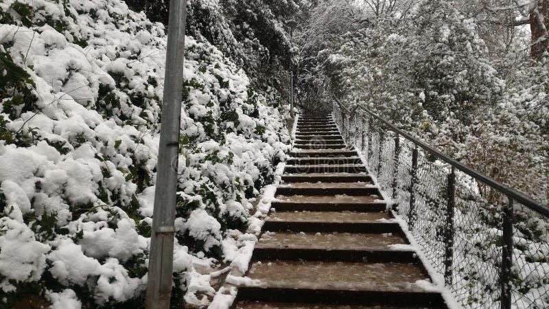 Nevicando in Terrassa fotografia stock