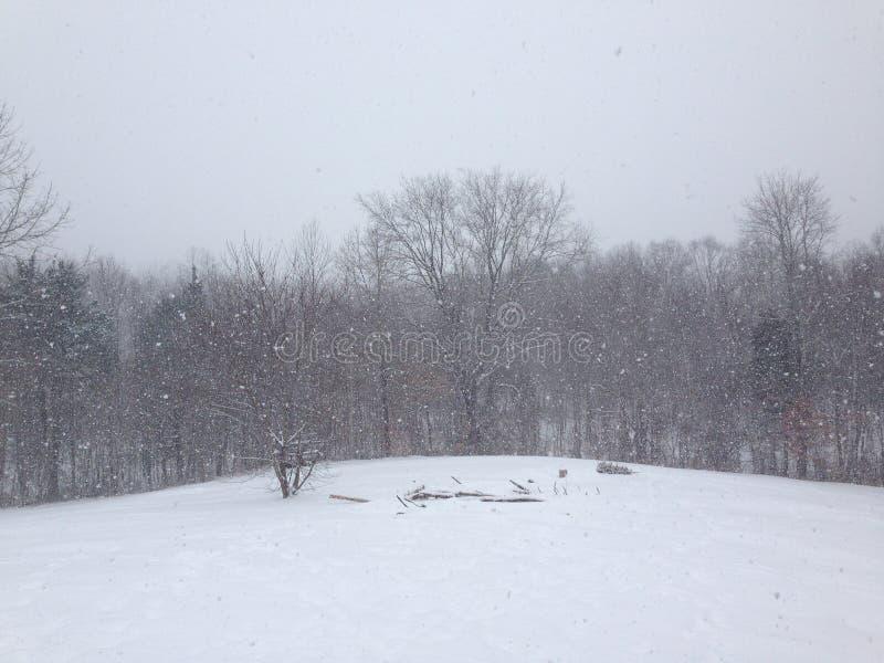 Nevicata molto fotografia stock libera da diritti