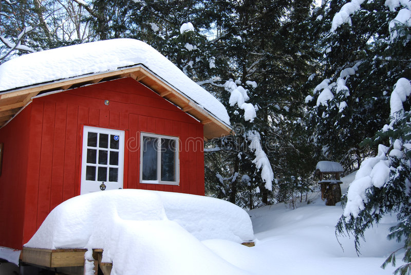 Nevicato dentro fotografie stock libere da diritti
