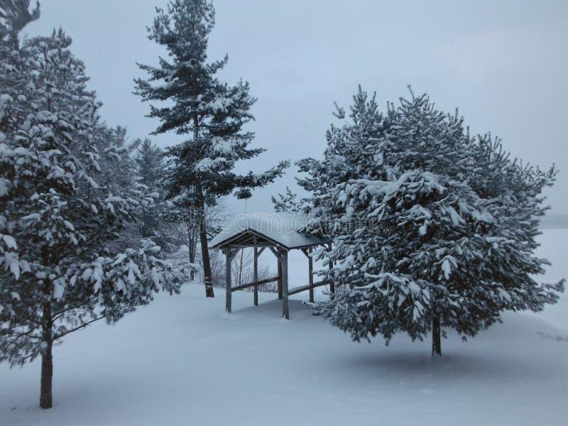 Nevicato dentro immagini stock libere da diritti