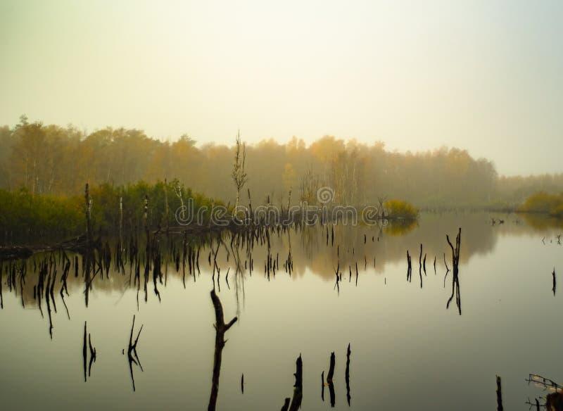 Nevoento amarre a paisagem fotos de stock royalty free