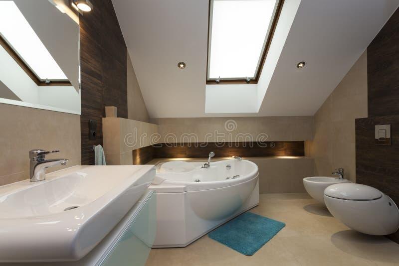 New bathroom. New stylish bathroom with a modern appliances stock photo