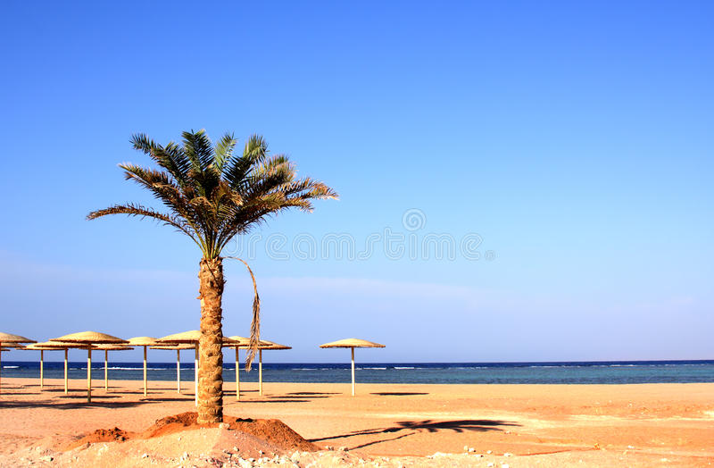 New beach in Nabk bay stock images