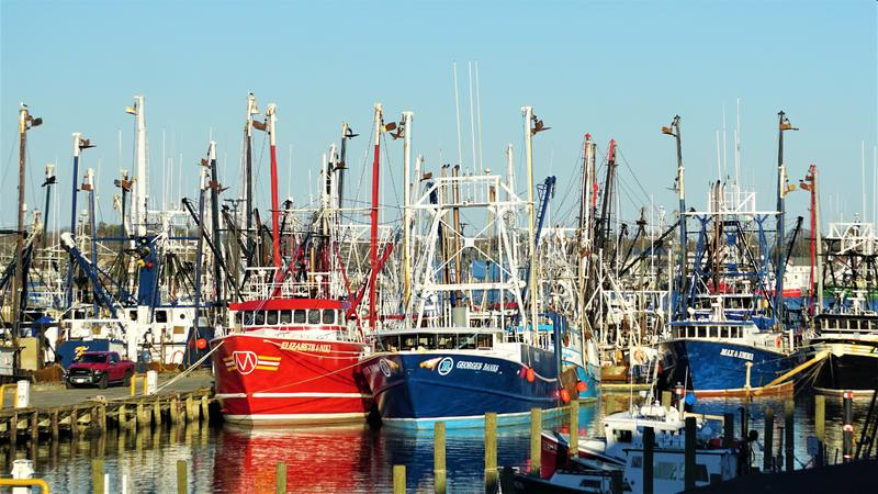 New Bedford fishing fleet in port stock photography