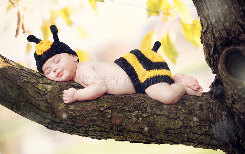 New born baby girl dressed as a bee. Born girl dressed as a bee on a branch of a tree royalty free stock image