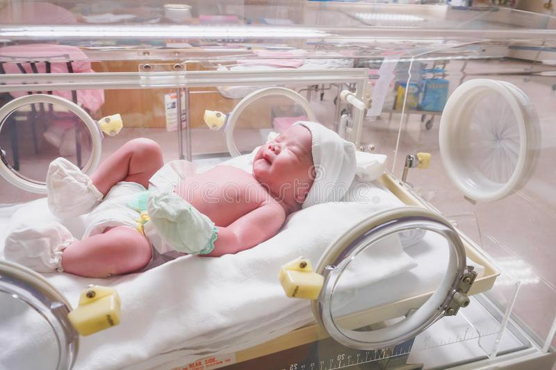 New born baby infant sleep in the incubator at hospital. Room royalty free stock photo