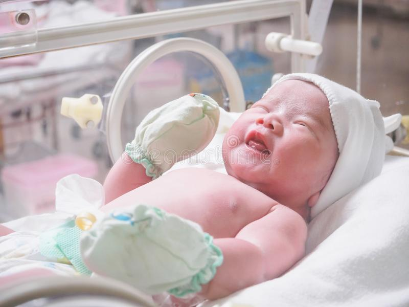 New born baby infant sleep in the incubator at hospital. Room royalty free stock images