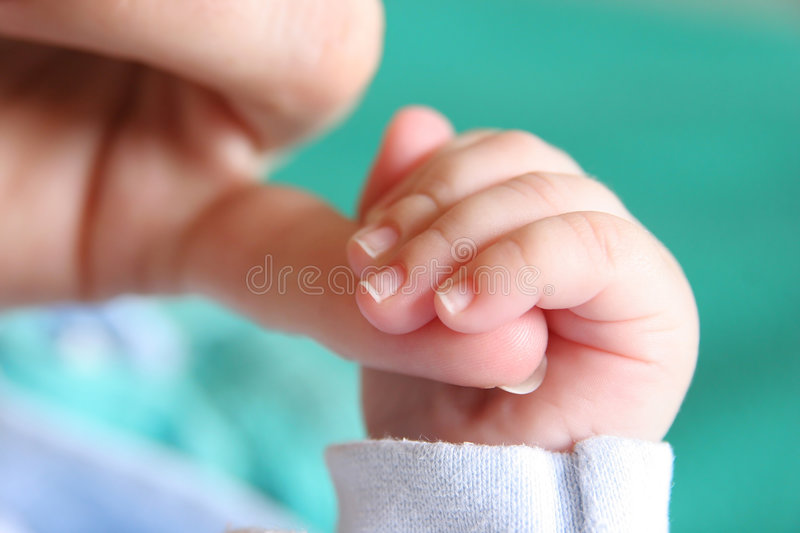 New born Baby's hand. Gripping for mothers finger royalty free stock images