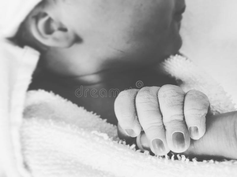 New born Baby s hand. Holds, birth stock photo