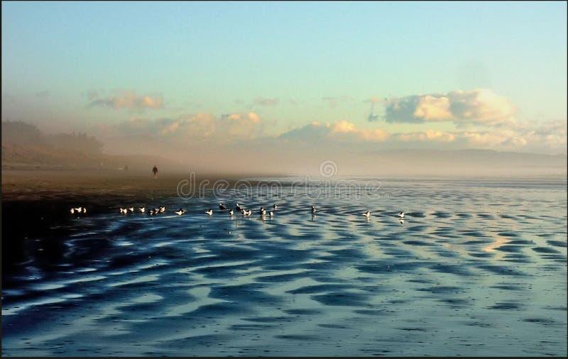 New Brighton Beach stock images