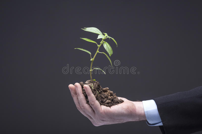 New Business Life stock photos