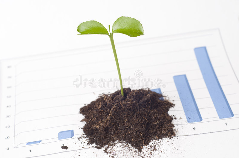 New business perspective. Seedling in soil on business graph royalty free stock photography