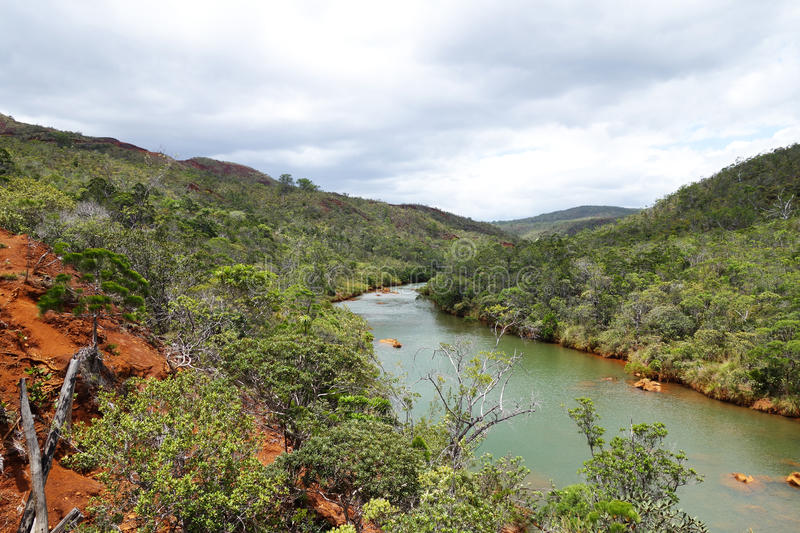 New Caledonia`s River. Beautiful river in New Caledonia stock image