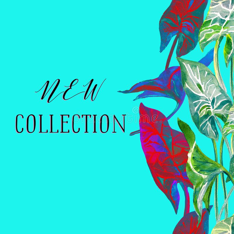New collection banner in trendy pastel blue color with bright red, blue and green tropical leaves vector illustration