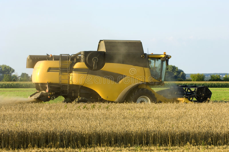 Download New Combine harvester stock photo. Image of growth, corn - 5854494