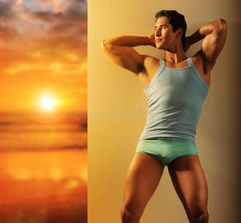 Download New dawn of male stock photo. Image of naked, shape, healthy - 29018224