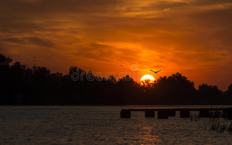New day in the Danube Delta royalty free stock image