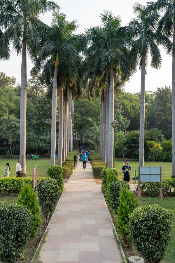 Palm trees line a walking path inside of Lodhi Garden, a large city park royalty free stock image