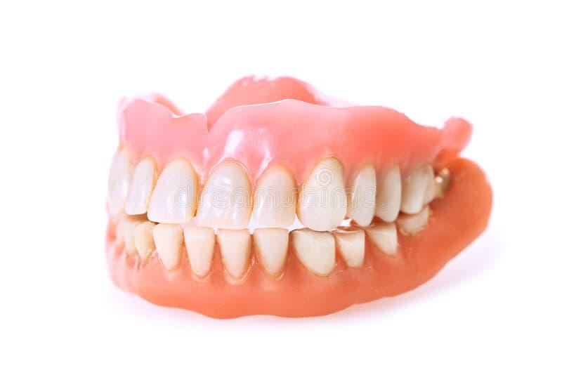 Dental dentures on white background. New dental dentures isolated on white background royalty free stock images