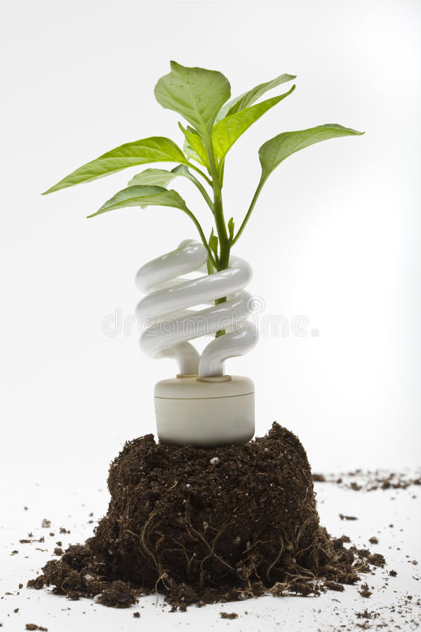 Download New Energy stock image. Image of close, conservation - 10820009