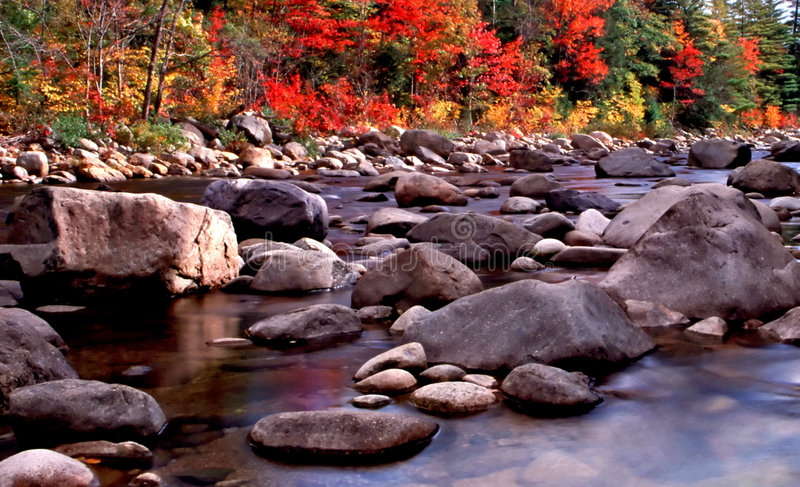 New England Fall Foliage. Fall foliage at New England royalty free stock photos