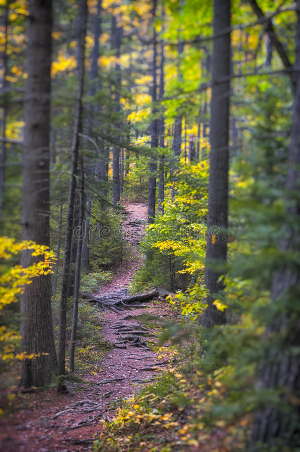 New England in fall. Fall foliage in New Hampshire, New England royalty free stock images