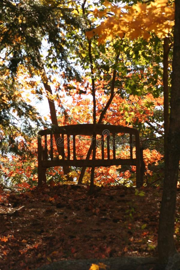 New england fall. I just love driving all over places in new england in the fall.. the colors are vibrant and adds a sense of namasteness to the vibe royalty free stock photos