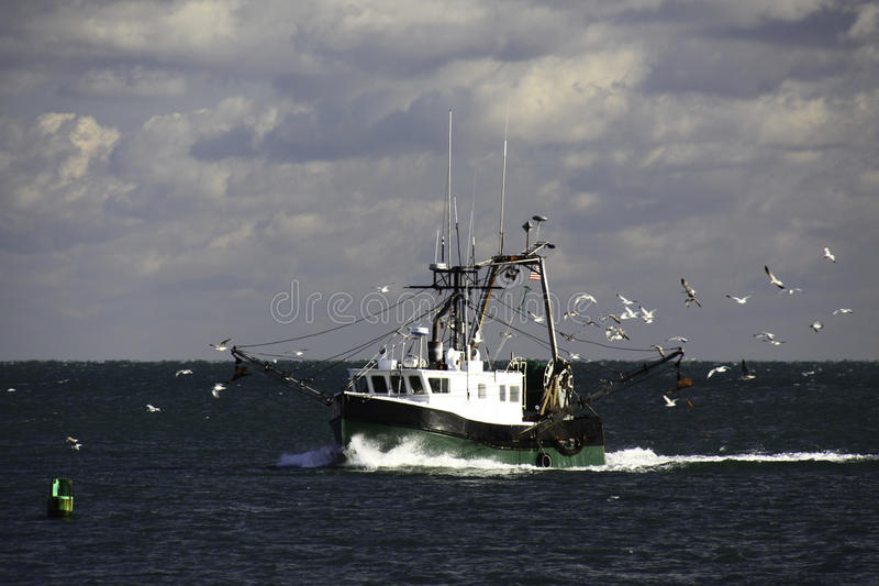 New England Fishing Trawler and Seagulls stock image
