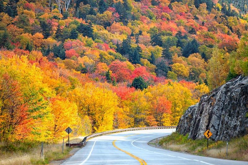New England landssida royaltyfri bild