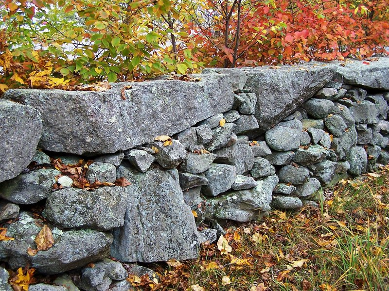 New England stonewall. A New England stonewall in fall royalty free stock photos
