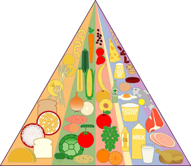 Download New Food Pyramid Chart stock vector. Image of diet, chart - 14785087