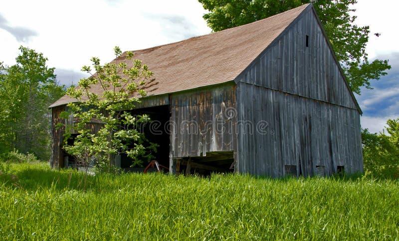 New Hampshire stajnia, uprawiać ziemię i rolnictwo, obraz royalty free