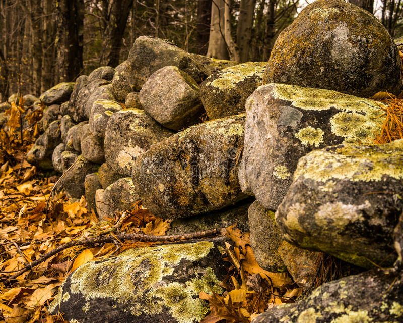 New Hampshire stone wall close-up in the fall royalty free stock photos