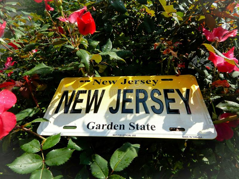 New Jersey License Plate In A Flower Garden. New Jersey the garden state with a license plate in a rose garden royalty free stock image