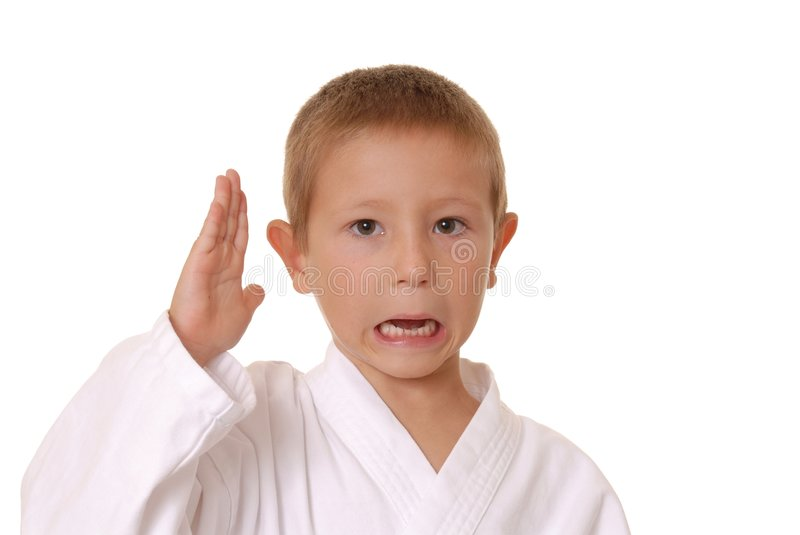 Download New Karate Kid Two Royalty Free Stock Photography - Image: 1056087