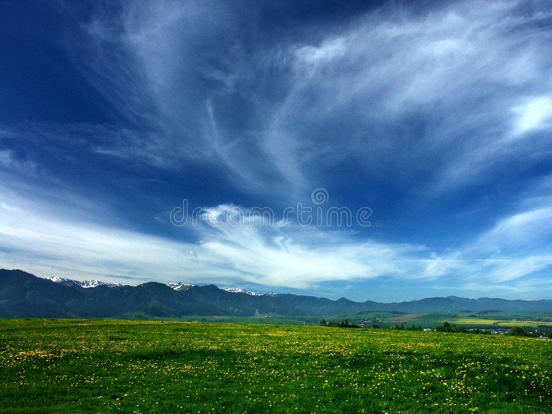 New Landscape Royalty Free Stock Photo