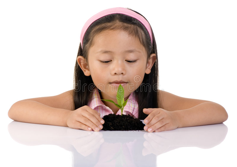 New Life. A young girl looks at a small seedling that has just sprouted. She wraps her hands around it, to protect it from harm royalty free stock images