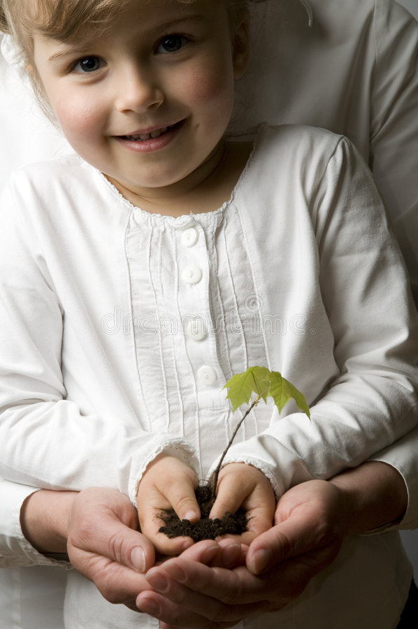 New life. Seedling in small girls hands stock images